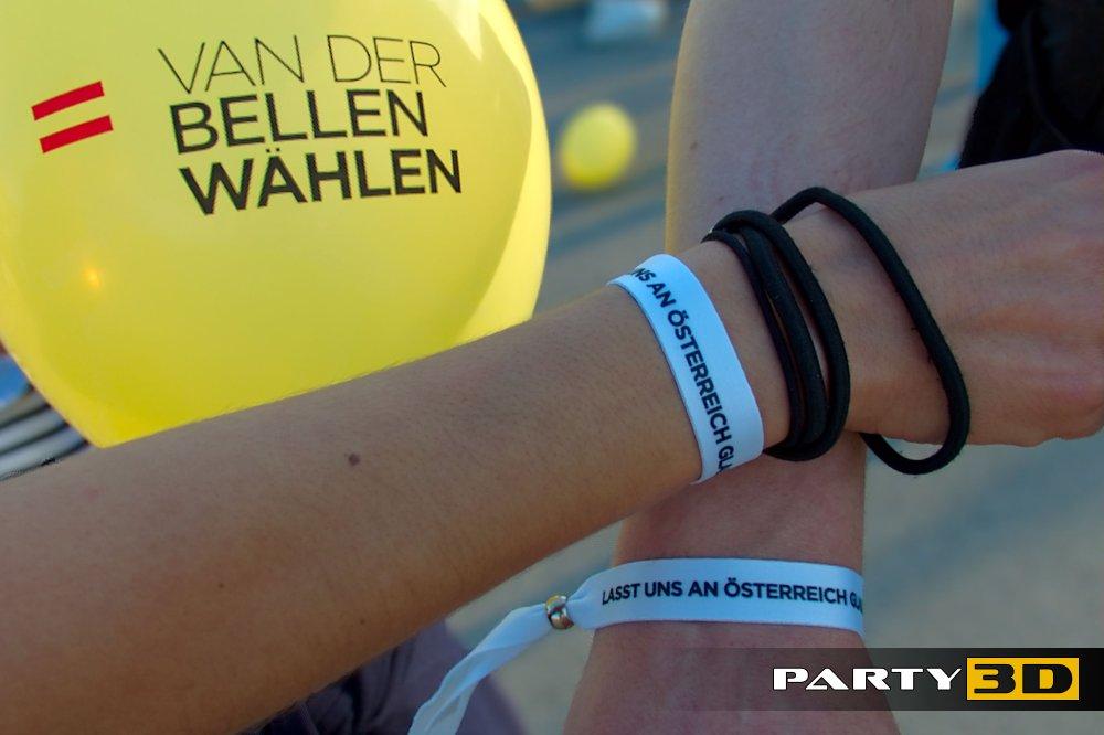 Van der Bellen Rave & Demo